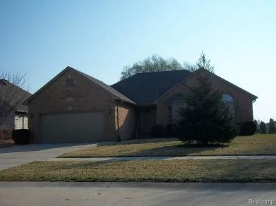 Macomb Single Family Home For Sale: 54774 Jack