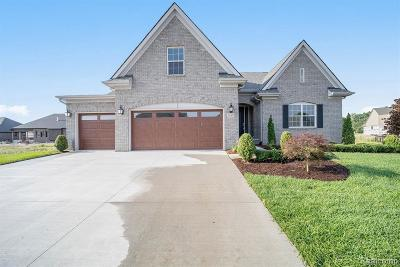 Macomb Single Family Home For Sale: 21972 Majestic Dr N