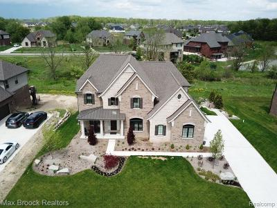 Oakland Twp Single Family Home For Sale: 846 Southwick Crt
