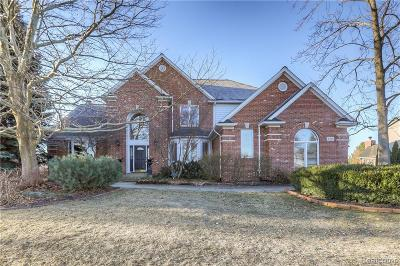 Oakland Twp Single Family Home For Sale: 3373 Country Creek Dr