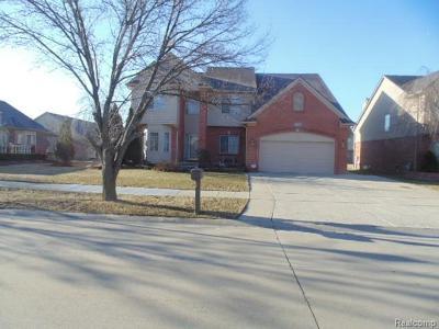 Clinton Township Single Family Home For Sale: 17314 Puritan Dr