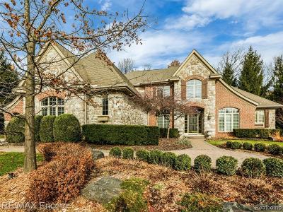 Clarkston Single Family Home For Sale: 5166 Springdale Crt