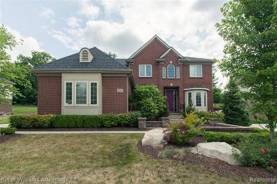 Farmington Hills Single Family Home For Sale: 29422 Earth Ln