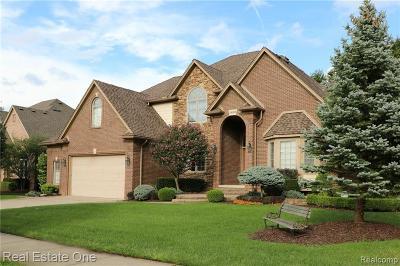 Harrison Twp Single Family Home For Sale: 39910 Mazuchet Dr