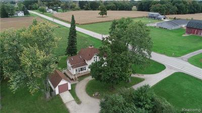 Lapeer Single Family Home For Sale: 4593 Lake Pleasant Rd