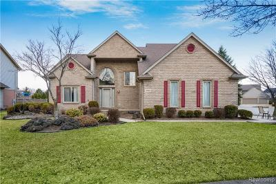 Clinton Township Single Family Home For Sale: 19801 Woodview Dr