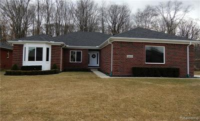 Macomb Single Family Home For Sale: 45610 Lookout Dr