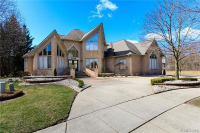 Shelby Twp Single Family Home For Sale: 12748 Towering Oaks Dr