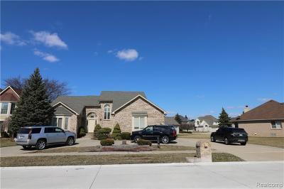 Sterling Heights Single Family Home For Sale: 2469 Hornbeam Dr