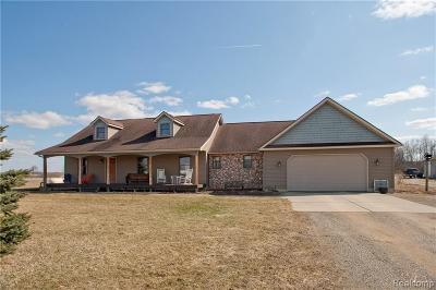 Lapeer Single Family Home For Sale: 2278 Millington Rd