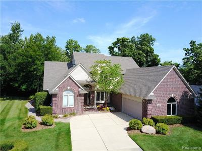 Troy Single Family Home For Sale: 1249 Cadmus Dr