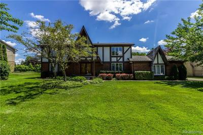 Bloomfield Hills Single Family Home For Sale: 4229 Sedgemoor Ln