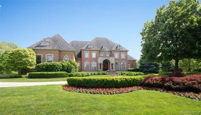 Northville Single Family Home For Sale: 47525 Capri Crt