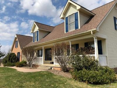Lapeer Single Family Home For Sale: 1672 W Hunters Creek Rd