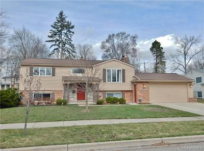Northville Single Family Home For Sale: 531 Reed St