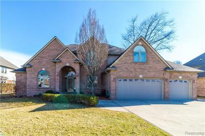Harrison Twp Single Family Home For Sale: 28046 Lansdowne Dr