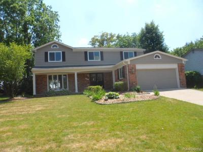 Rochester Hills Single Family Home For Sale: 3123 Rolling Green Cir