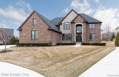 Northville Single Family Home For Sale: 18834 Marble Head Dr
