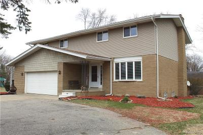Utica Single Family Home For Sale: 54266 Mound Rd