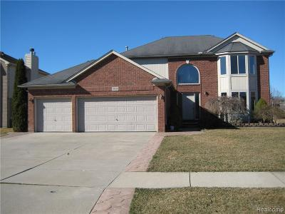 Chesterfield  Single Family Home For Sale: 29158 Rachid Ln