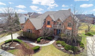 Northville Single Family Home For Sale: 18394 Clairmont Circle E Cir E