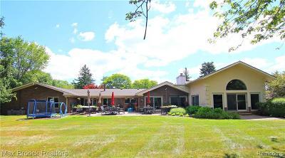 Farmington Hills Single Family Home For Sale: 29959 Richmond Hl