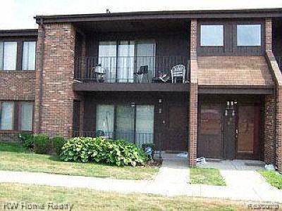 Southfield Condo/Townhouse For Sale: 23777 Village House Dr S