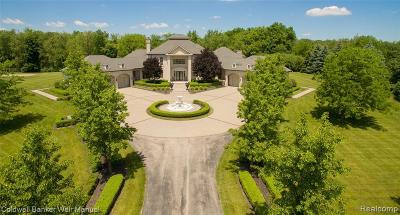 Northville Single Family Home For Sale: 19460 Via Piazza Dr