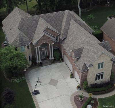 Macomb Single Family Home For Sale: 18540 Cracklewood Dr