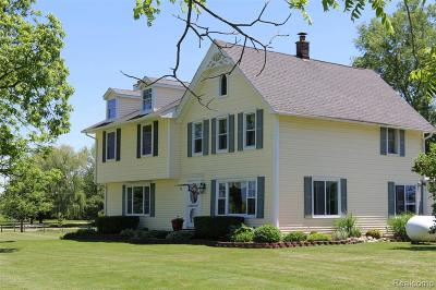 Macomb Single Family Home For Sale: 36220 Weber Rd