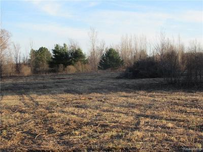 Lapeer Residential Lots & Land For Sale: N Summers Rd
