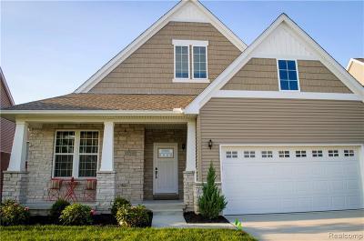 Westland Single Family Home For Sale: 37140 Chestnut Dr