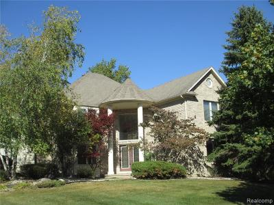 Rochester Single Family Home For Sale: 1901 Westridge Dr