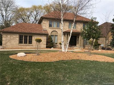 Farmington Hills Single Family Home For Sale: 39376 Heatherbrook Dr