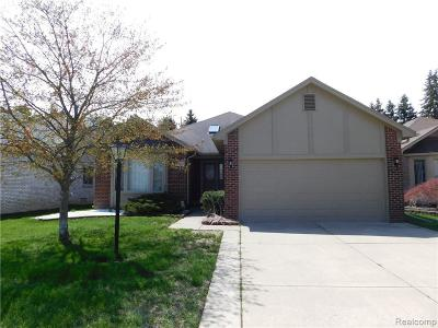 Macomb Condo/Townhouse For Sale: 7062 Copper Creek Dr