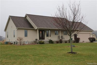 St. Clair Single Family Home For Sale: 7726 Fargo Rd
