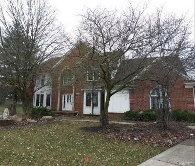 Troy Single Family Home For Sale: 6059 Country Ridge Dr