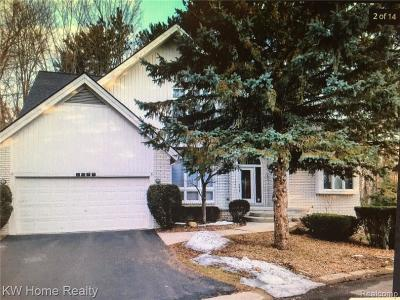 West Bloomfield Single Family Home For Sale: 6289 Lindsay Crt
