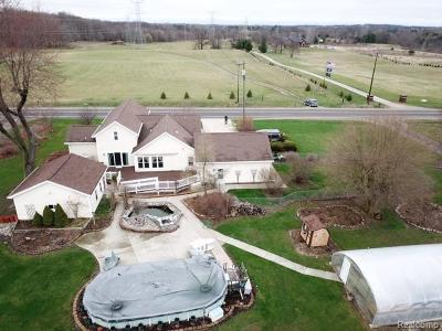 Lapeer Single Family Home For Sale: 4294 Rochester Rd