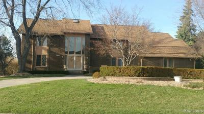 Bloomfield Hills Single Family Home For Sale: 2106 Coach Way Court