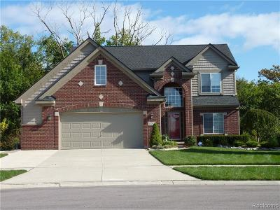 West Bloomfield Single Family Home For Sale: Recreation