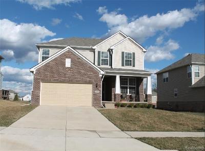 Oakland Single Family Home For Sale: 29874 Macintosh Ln