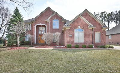 Shelby Twp Single Family Home For Sale: 13556 Partridge Run