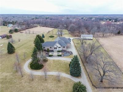 Lapeer Single Family Home For Sale: 2890 Metamora Rd