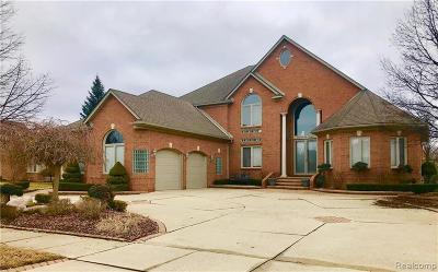 Shelby Twp Single Family Home For Sale: 55618 Saint Regis Dr