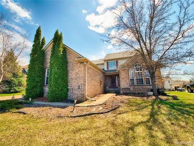 Clarkston Single Family Home For Sale: 4886 Spring Meadow Dr