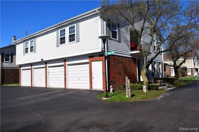 Harrison Twp Condo/Townhouse For Sale: 26064 N Lake Dr