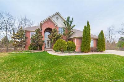 Auburn Hills Single Family Home For Sale: 3444 Paramount Ln
