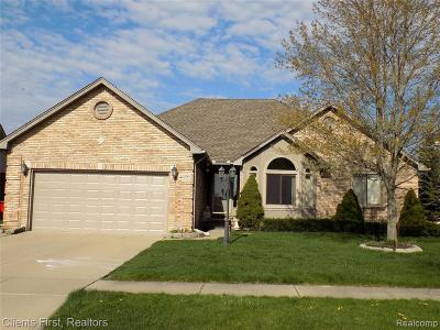 Macomb Single Family Home For Sale: 46193 Swirling Leaves Ln