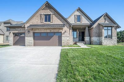 Shelby Twp Single Family Home For Sale: 13453 Valencia Dr